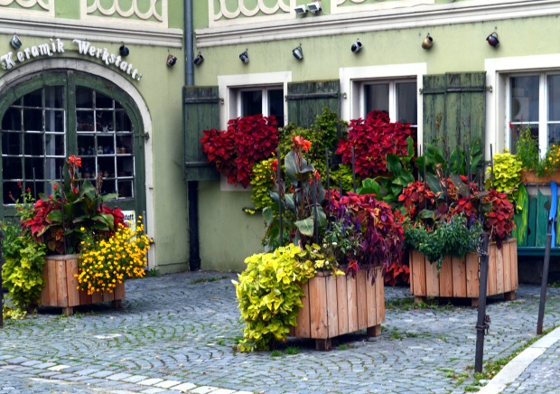 Regensburg Blumen